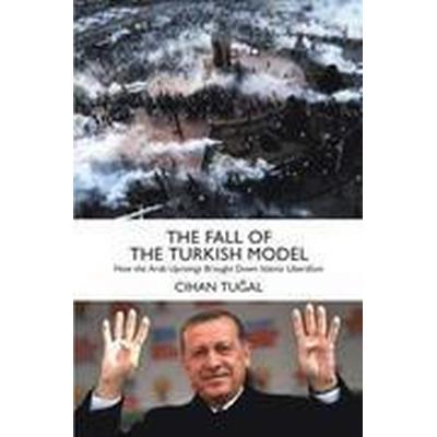 The Fall of the Turkish Model (Inbunden, 2016)
