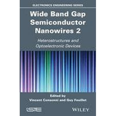 Wide Band Gap Semiconductor Nanowires for Optical Devices (Inbunden, 2014)