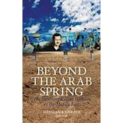 Beyond the Arab Spring (Häftad, 2014)