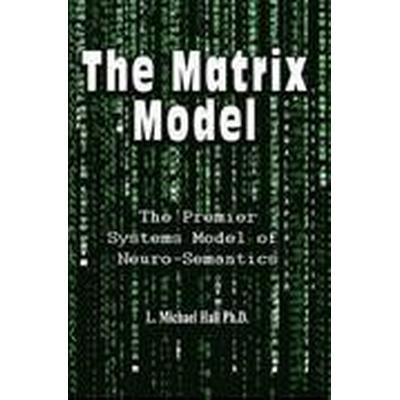 The Matrix Model (Häftad, 2016)