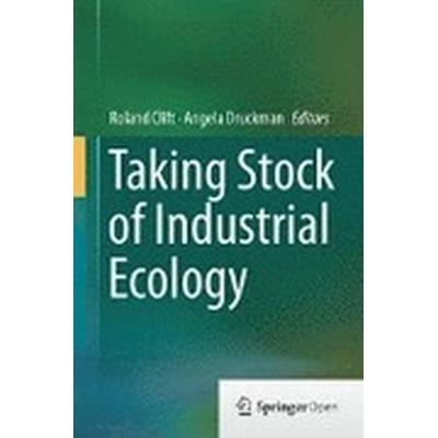 Taking Stock of Industrial Ecology (Inbunden, 2015)