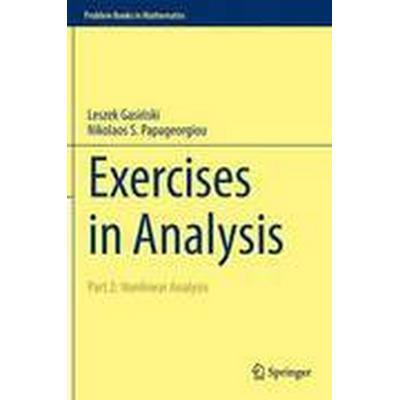 Exercises in Analysis: Part 2 Nonlinear Analysis (Inbunden, 2016)