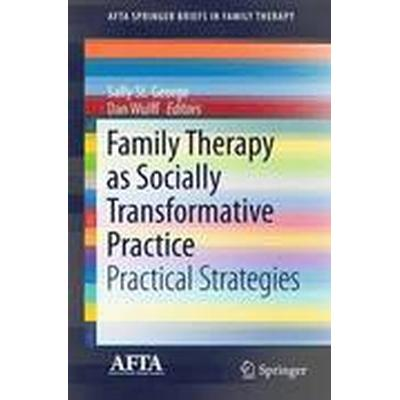 Family Therapy as Socially Transformative Practice (Häftad, 2016)