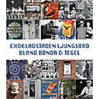 Chokladstaden Ljungsbro: bland bönor och tegel (Häftad, 2007)