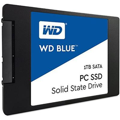 Western Digital Blue WDS100T1B0A 1TB