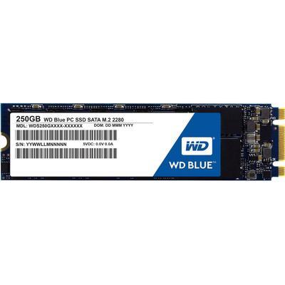 Western Digital Blue WDS250G1B0B 250GB