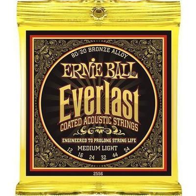 Ernie Ball P02556