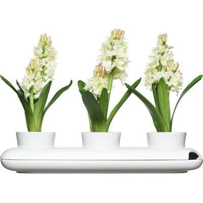 Sagaform Trio Herb Pot 13cm