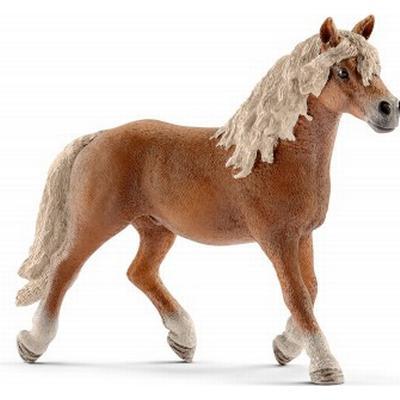 Schleich Haflinger Stallion 13813