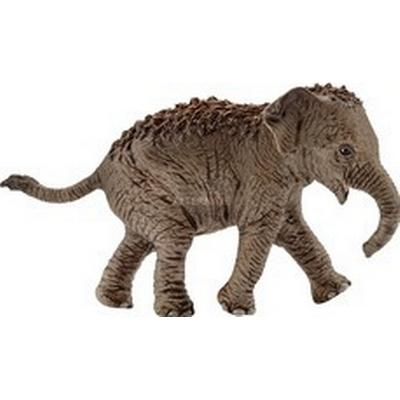 Schleich Asian Elephant Baby 14755