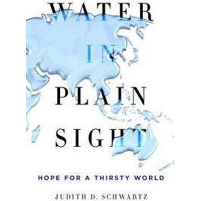 Water in Plain Sight (Inbunden, 2016)