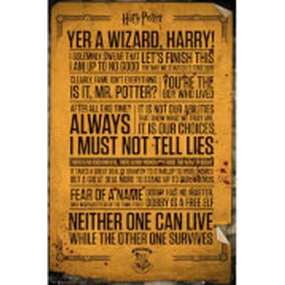GB Eye Harry Potter Quotes Maxi 61x91.5cm Affisch