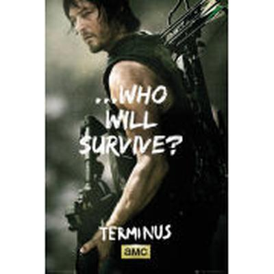 GB Eye The Walking Dead Daryl Survive 61x91.5cm Affisch