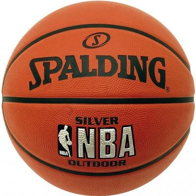 Spalding Silver Indoor/Outdoor