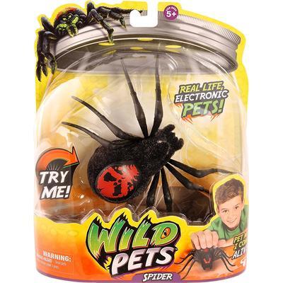Moose Wild Pets S1 Spider