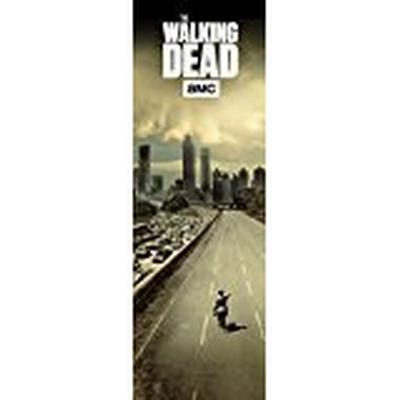 GB Eye The Walking Dead City 53x158cm Door Affisch