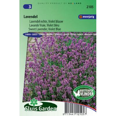 Lavender Lavendula Vera 200 pack