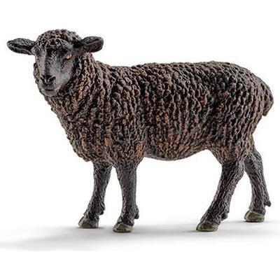 Schleich Black Sheep 13785