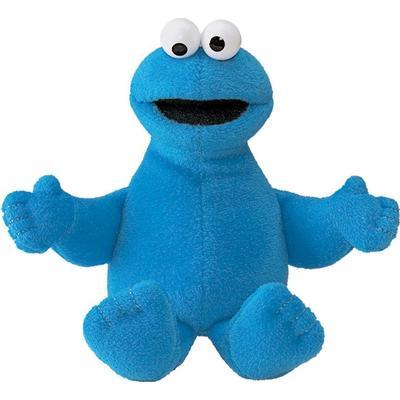Cookie Monster Beanbag
