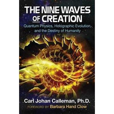 The Nine Waves of Creation: Quantum Physics, Holographic Evolution, and the Destiny of Humanity (Häftad, 2016)