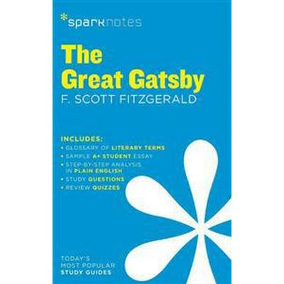 Sparknotes The Great Gatsby (Pocket, 2014)