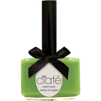 Ciaté The Paint Pot Nail Polish Mojito 13.5ml