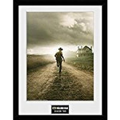 GB Eye The Walking Dead Season 2 30x40cm Affisch