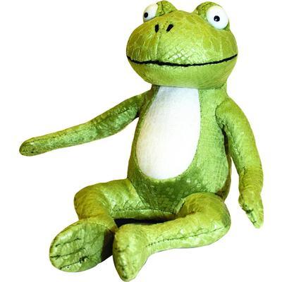 Aurora Room on the Broom Frog