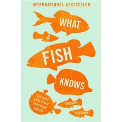 What a Fish Knows (Storpocket, 2017)