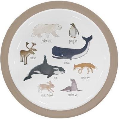 Sebra Melamintallrik Arktiska Djur