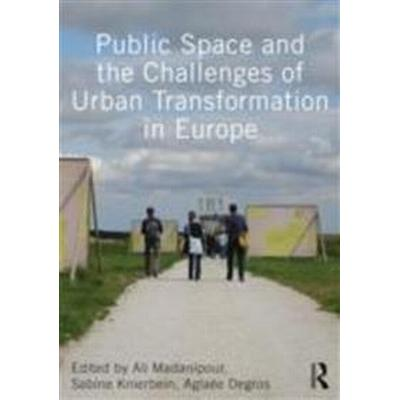Public Space and the Challenges of Urban Transformation in Europe (Pocket, 2013)