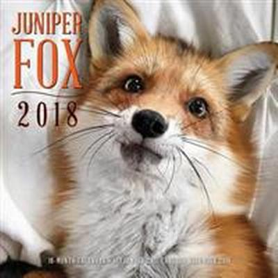 Juniper Fox 2018 Calendar (Övrigt format, 2017)