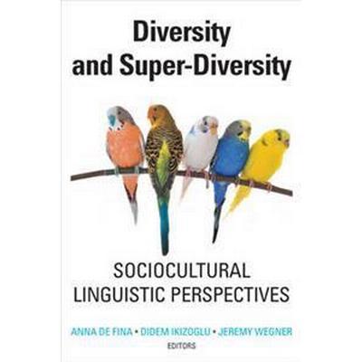 Diversity and Super-Diversity: Sociocultural Linguistic Perspectives (Häftad, 2017)