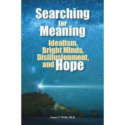 Searching for Meaning: Idealism, Bright Minds, Disillusionment, and Hope (Häftad, 2013)