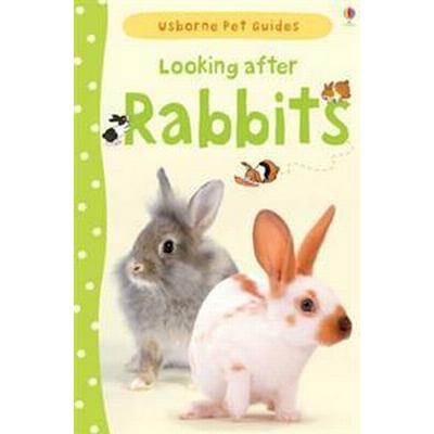 Looking After Rabbits (Inbunden, 2012)