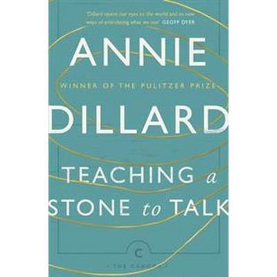 Teaching a Stone to Talk (Häftad, 2017)