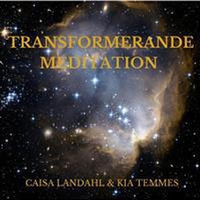 Transformerande meditation (Ljudbok nedladdning, 2017)