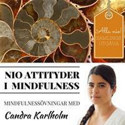 SAMLINGSUTGÅVA: Nio attityder i mindfulness av Candra Karlholm (Ljudbok nedladdning, 2016)