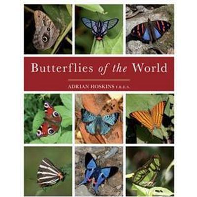 Butterflies of the World (Inbunden, 2015)