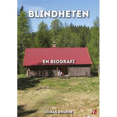 Blindheten: en biografi (Danskt band, 2017)