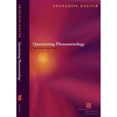 Questions of Phenomenology (Pocket, 2017)