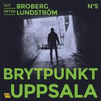 Brytpunkt Uppsala (Ljudbok nedladdning, 2017)