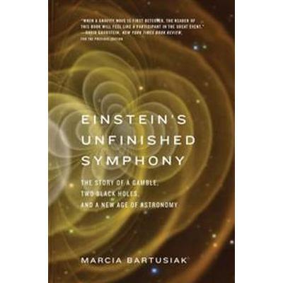 Einstein's Unfinished Symphony (Pocket, 2017)
