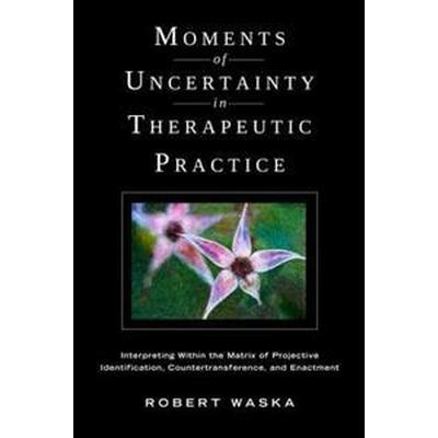 Moments of Uncertainty in Therapeutic Practice (Pocket, 2011)