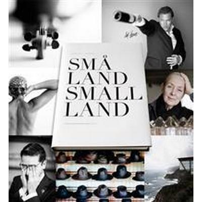Små Land / Small Land (Danskt band, 2015)