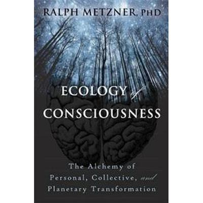 Ecology of Consciousness (Pocket, 2017)