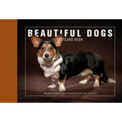Beautiful Dogs Postcard Book (Häftad, 2014)