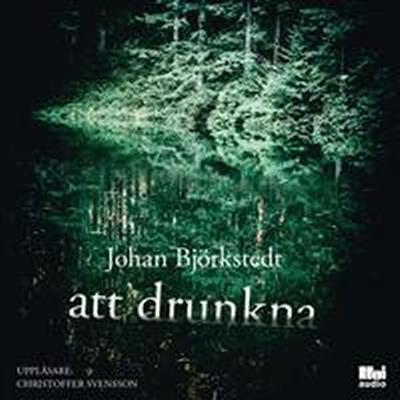 Att drunkna (Ljudbok nedladdning, 2017)