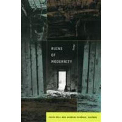 Ruins of Modernity (Pocket, 2010)
