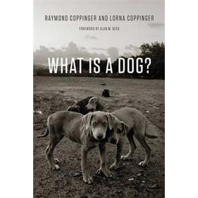 What Is a Dog? (Pocket, 2017)